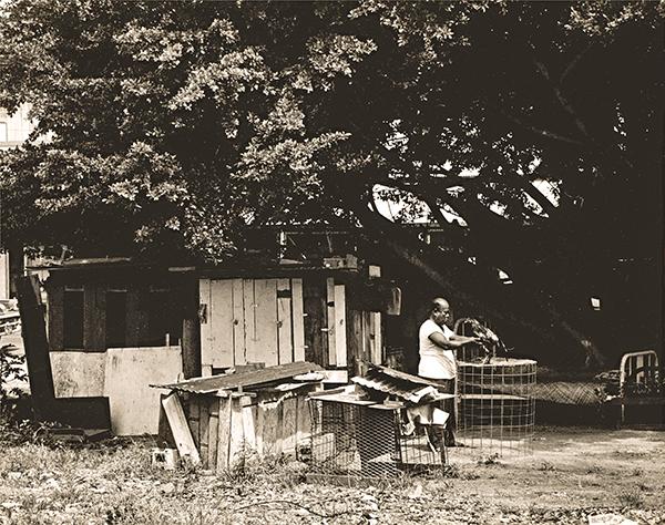 Francis Haar photograph