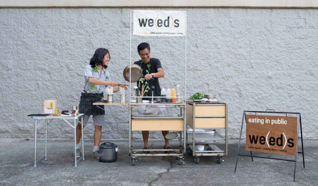 photo of two people cooking with edible weeds