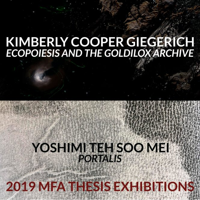 Detail image of work by Kimberly Cooper Giegerich and Yoshimi Teh Soo Mei