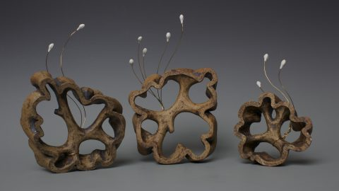 Ceramic works by Shannon Webb
